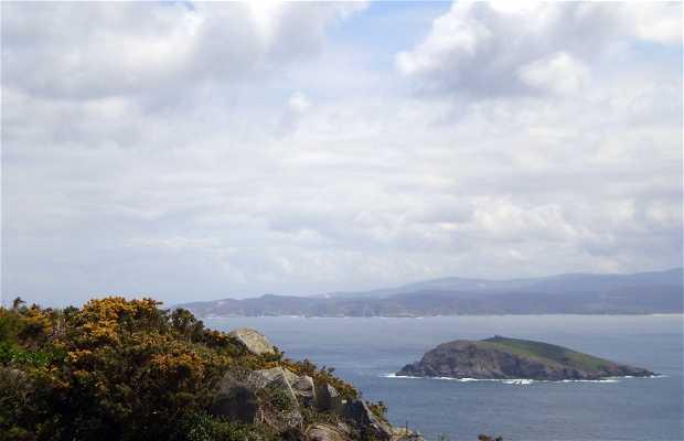 Isla Coelleira