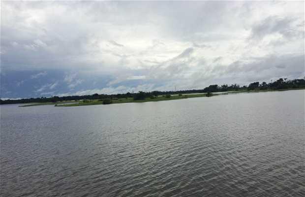 Rio Uatumã
