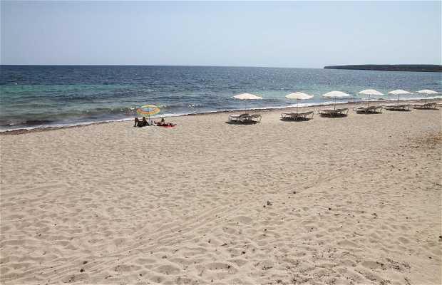 Playa de Ca Marí