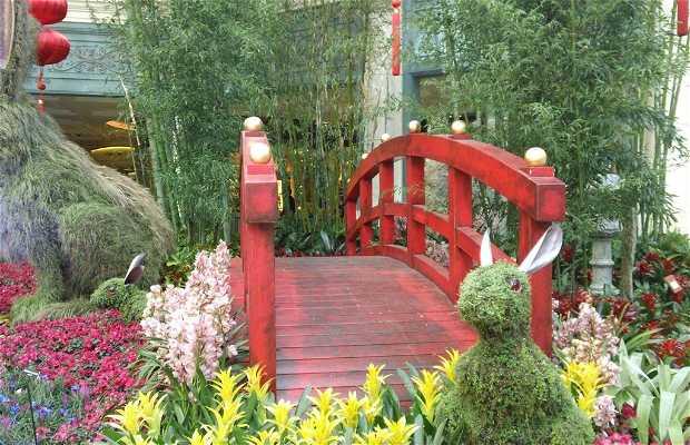 Hotel Bellagio Botanical Garden