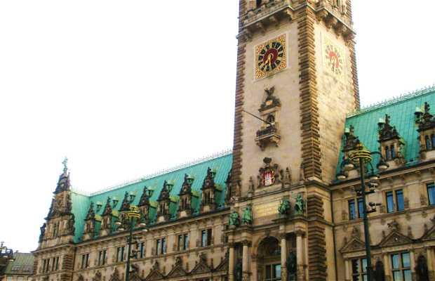 Town Hall - Hamburg Rathaus