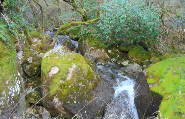 Montañas y Serras de Entrimo en invierno: Agua y Fuentes