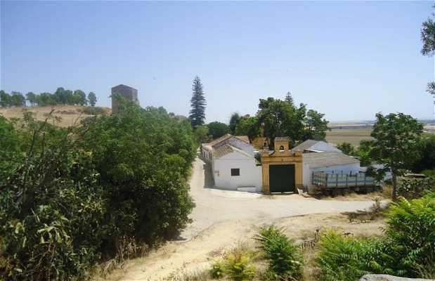 Palacio de Gandul