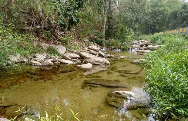 Rio Ocumare