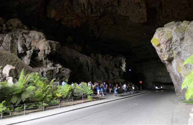 Nettle Cave