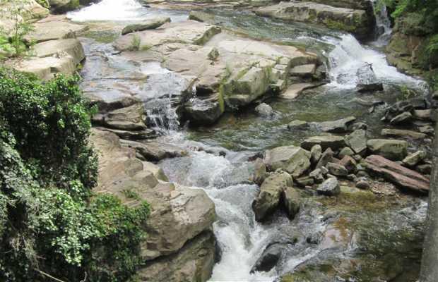 Rio Besaya