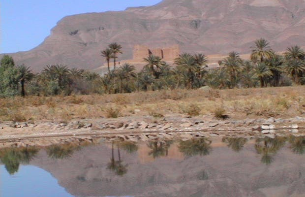 Vallee du Draa