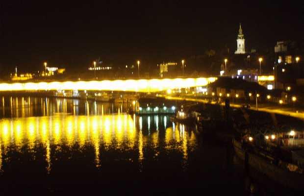 Ponte de Branko