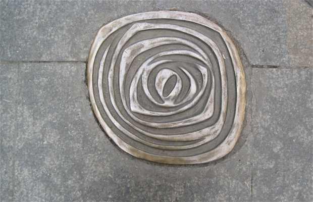 Nummulites - fossili