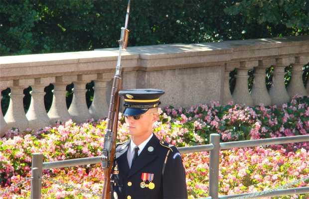 Cambio de Guardia en Tumba del Soldado Desconocido