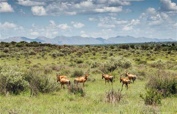 Naankuse Wildlife Sanctuary