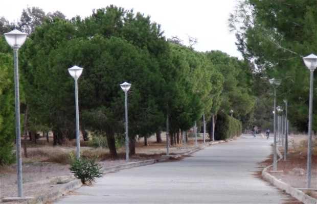 Parque Patticheio