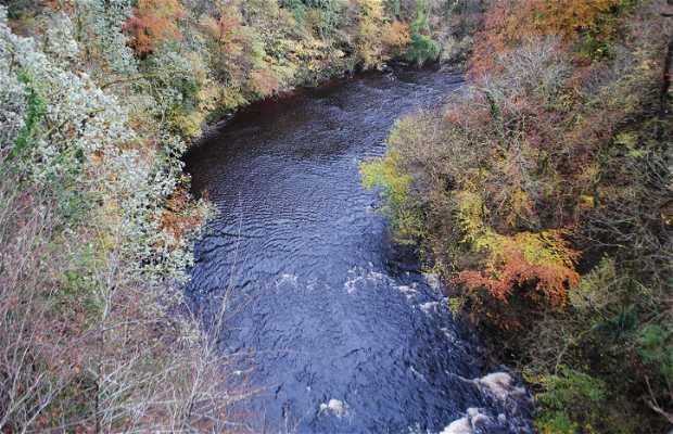 Rio Avon (Escocia)