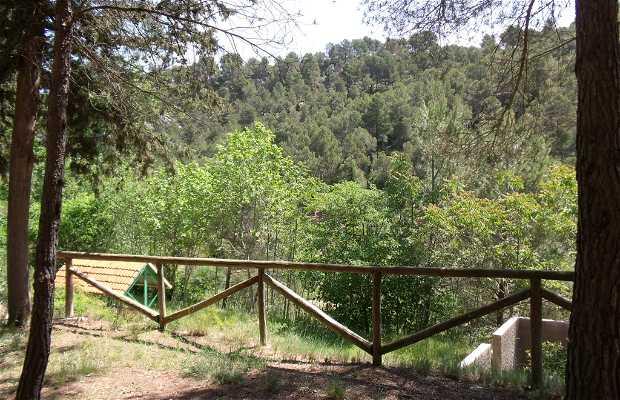 Tollo Pillete (acampada libre)