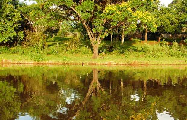 Área rural de Foz do Iguaçu PR