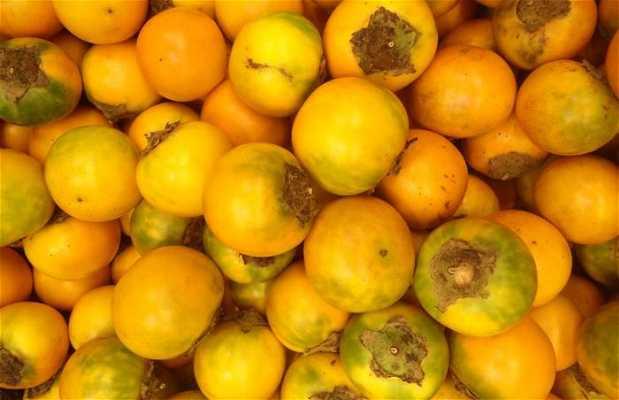 Frutas de Amazonia