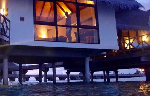 Islas Maldivas Force Seasons Resort