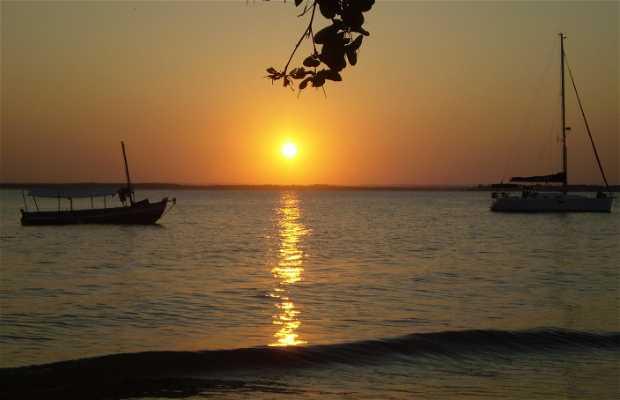 Praia da Harmonia (caixa prego ) -Ilha de Itaparica