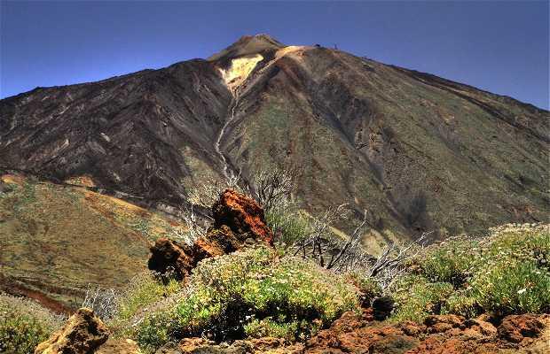 Hiking in Las Cañadas del Teide