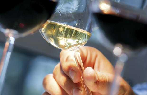 Escuela del Vino de Burdeos