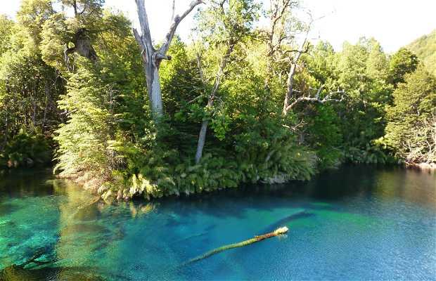 Laguna Arcoiris - Lago Conguillio