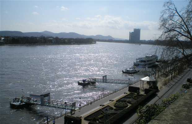 curso do Rio Rin por Bonn