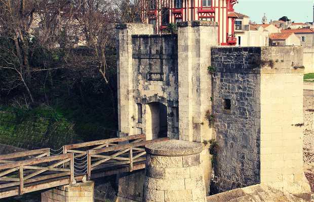 Porte des Deux Moulins