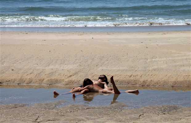 Playa Taray