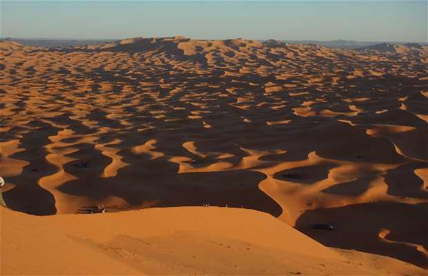 Radoin-saharaexpeditions