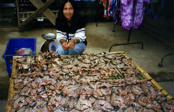 Mercato di generi alimentari a Pattaya