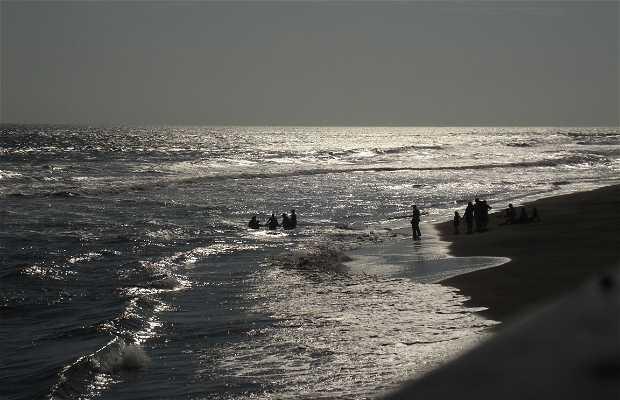 Playa Plata