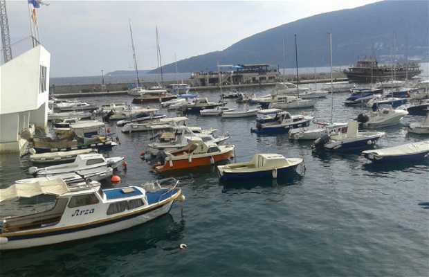 Herceg Novi Harbor
