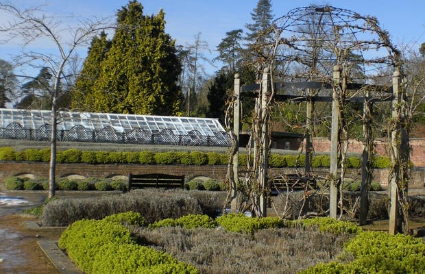 Pleasure Gardens (Jardin des Plaisirs)