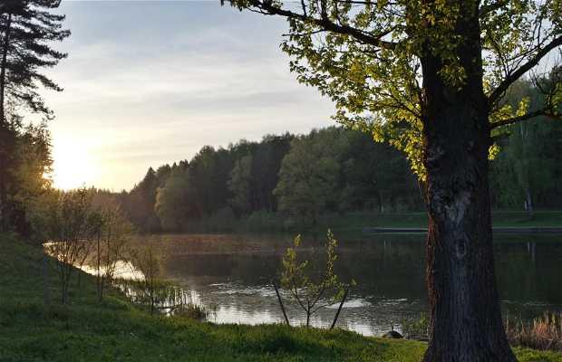 Pyacherski Park