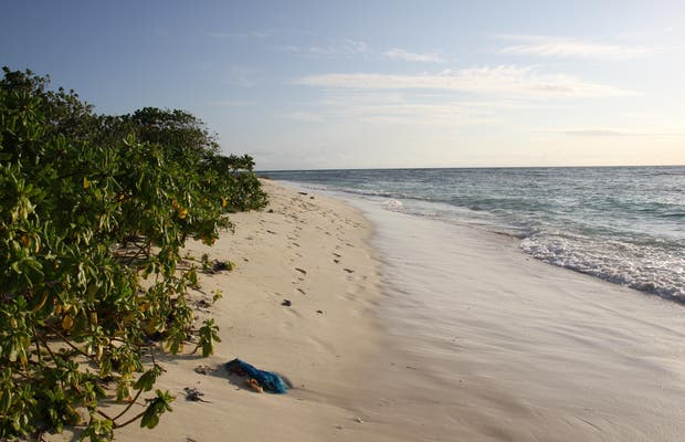 Naifaru Island