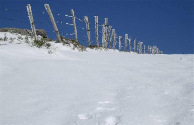 Il pozzo della neve (El pozo de la nieve)