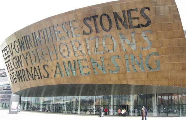 Centro del Milenio de Gales