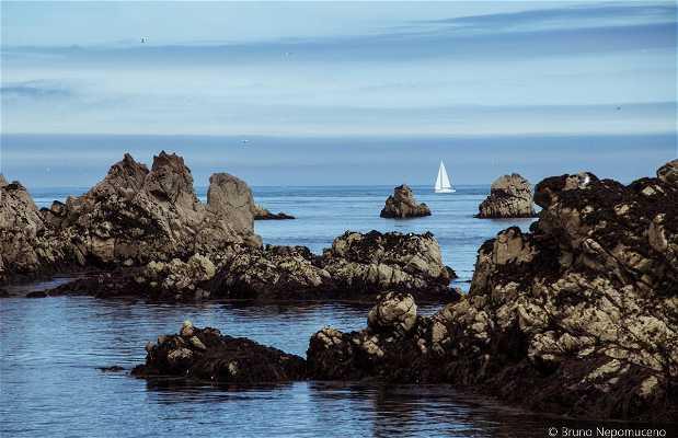 Reserva Natural das Sete Ilhas