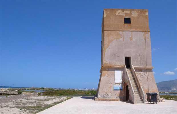 la Torre di Nubia