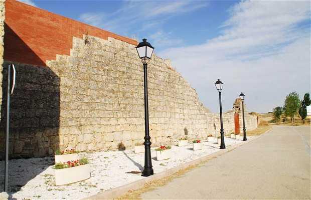 Muralla Y Fuente Del Caño