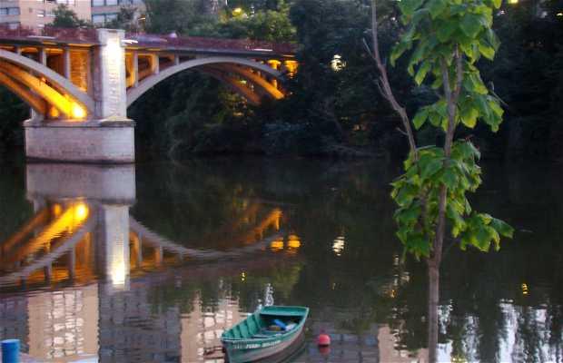 Paseos por la ribera del Pisuerga