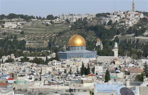 La tour de Phasaël, citadelle de David