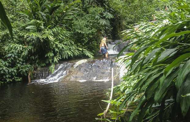 Quebrada Paraíso