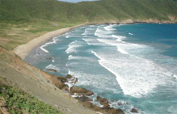 Spiaggia del morto in Colombia