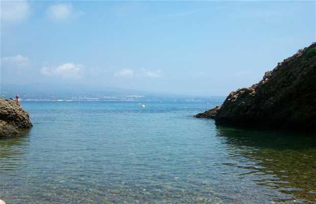 La Plageolle de l'île verte
