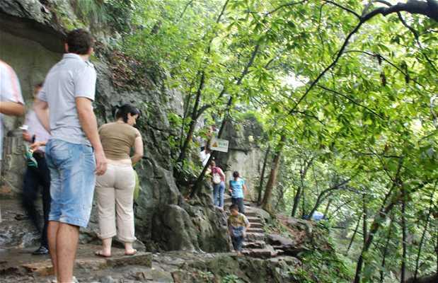 Escaliers au Mont Feilai
