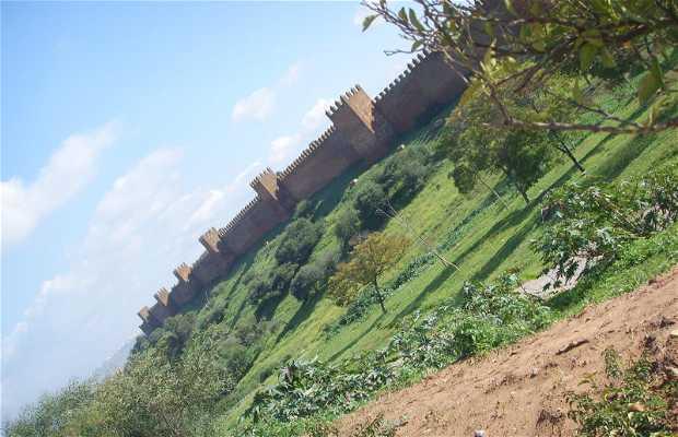 Sítio arqueológico Chellah