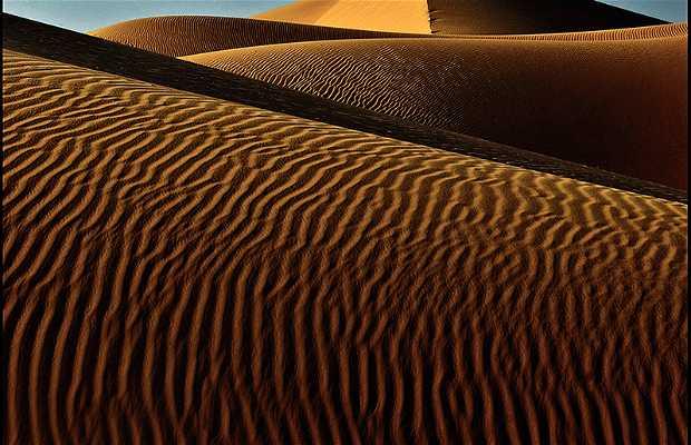 Excursión al desierto