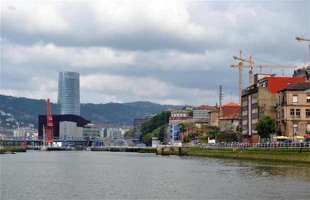 Escursione in battello sulla Ria di Bilbao