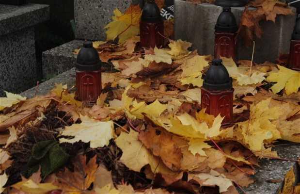 Cementerio Wolski